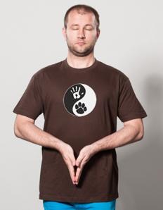 Pánské sportovní tričko Pejskař – Pes jingjang